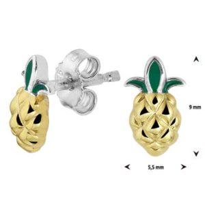 013-29855K Oorstekers ananas Z