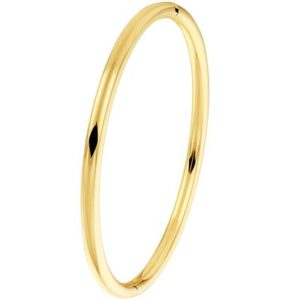 040-19661K Bangle armband Geelgoud 4 mm