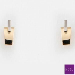 AUB81828.4 NOL Gouden oorbellen