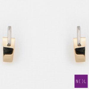AUB81828.5 NOL Gouden oorbellen