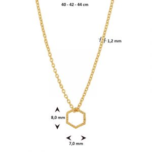 021-01296K Collier Zeshoek