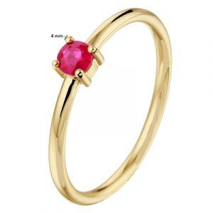 040-22798K Ring Robijn